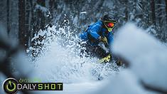 Seasonal Shredding - Daily Shot