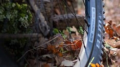 WTB Launches Proterra Wheelset Range