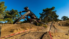 Sea Otter DH Gallery from Zuest