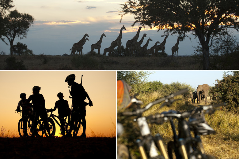 Bikes, guns, giraffes, elephants. Africa. photo Gary Perkin