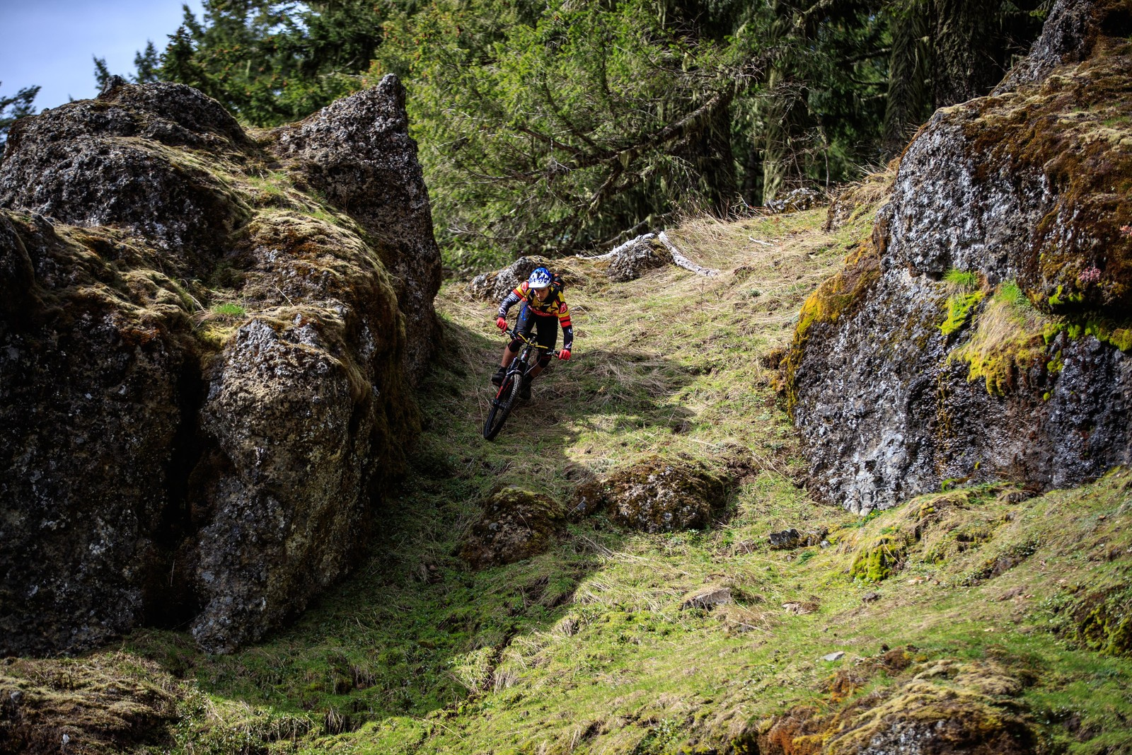 First Look Polygon Square One Ex Series Bikes Mountain Bikes