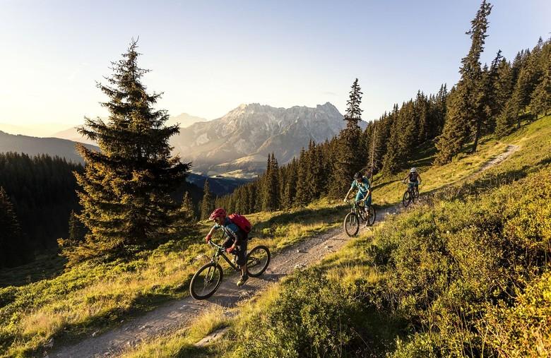 Beautiful Schoenleiten trail