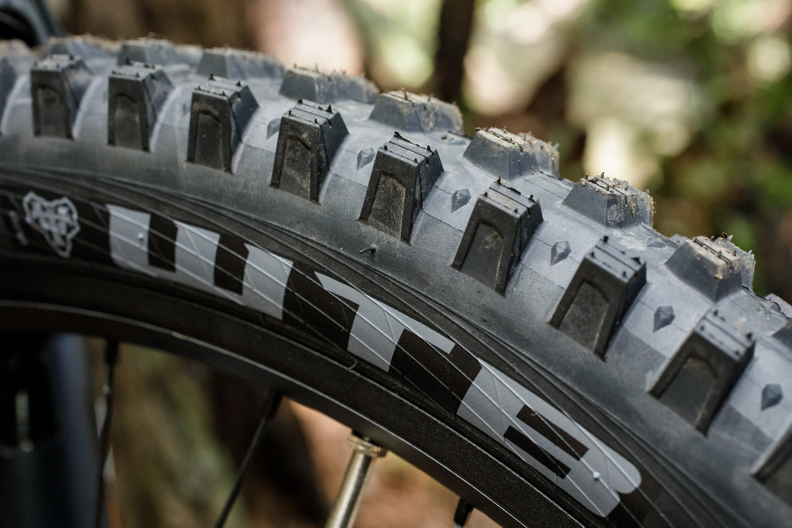WTB Verdict Wet Tire
