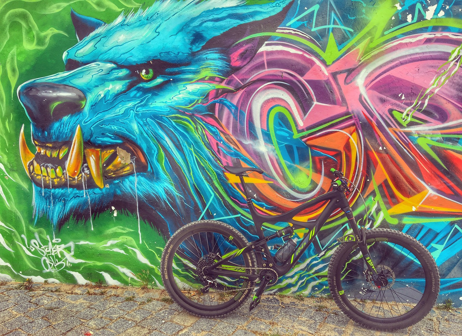 Lisbon streetart and bike design art