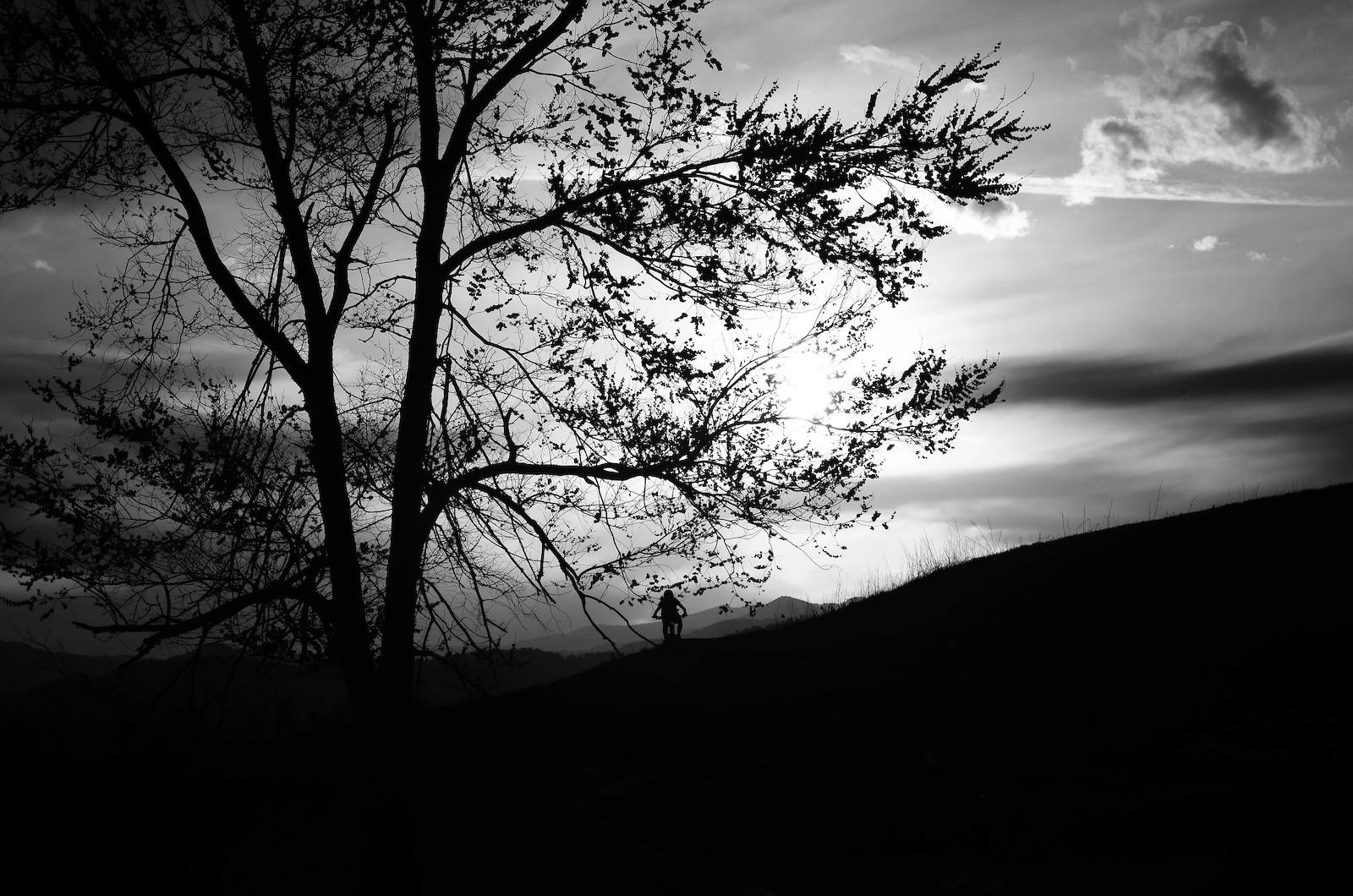 Into the Sunset - rhiannon - Mountain Biking Pictures - Vital MTB