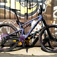 Santa Cruz 5010 Purple Haze edition