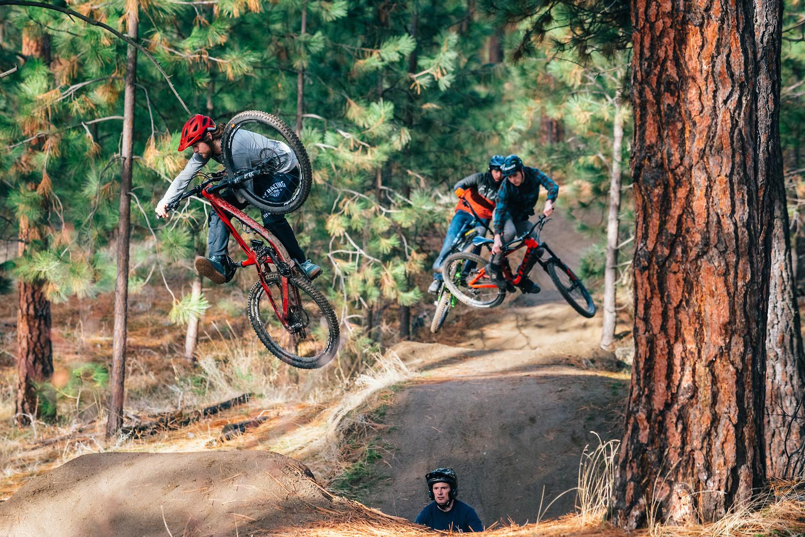 Steez Train - Schilly - Mountain Biking Pictures - Vital MTB
