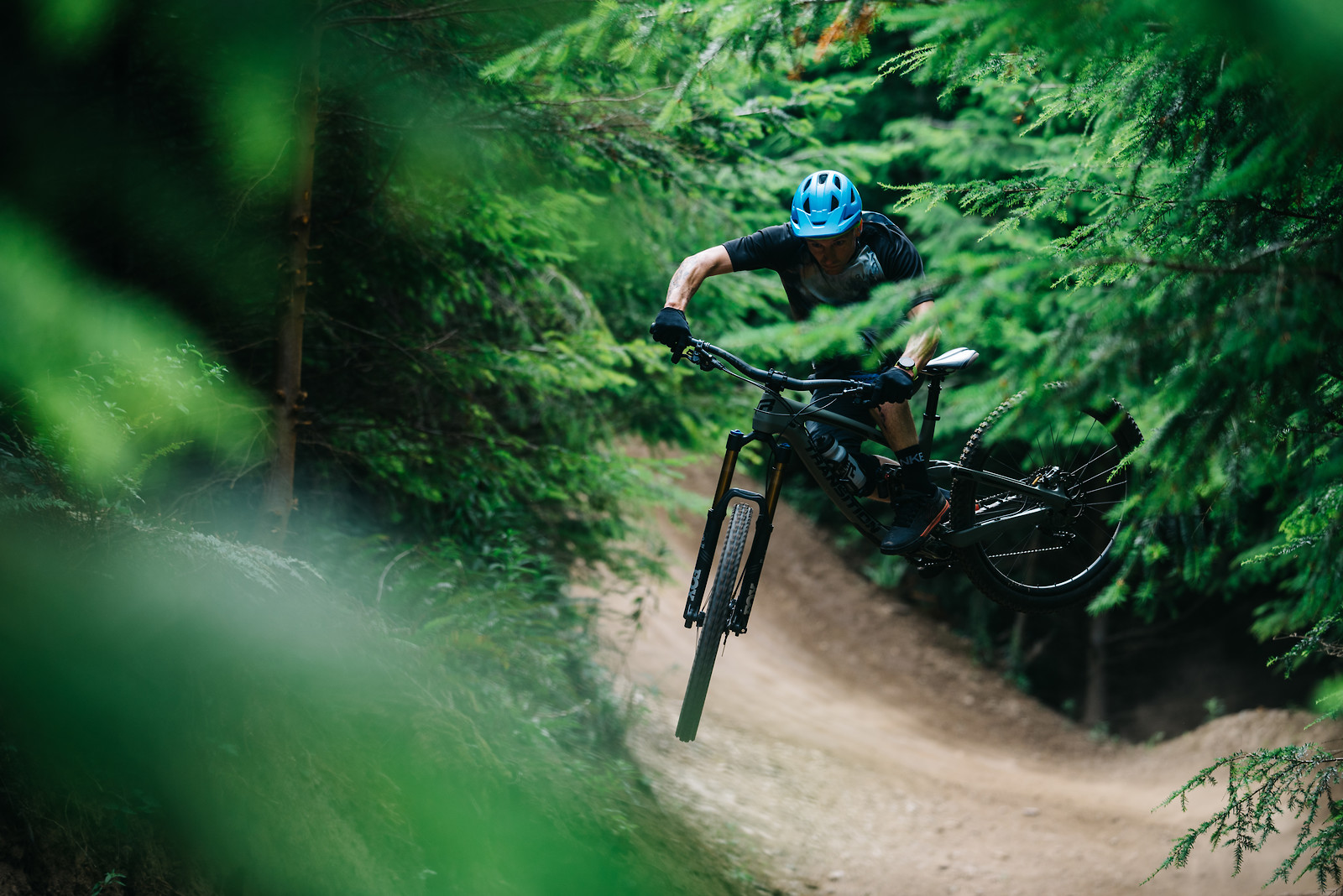 Tree Tunnel - Schilly - Mountain Biking Pictures - Vital MTB
