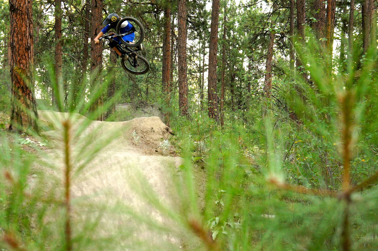 Skye Schillhammer: Rides Gravity - Skye_Schillhammer - Mountain Biking Pictures - Vital MTB