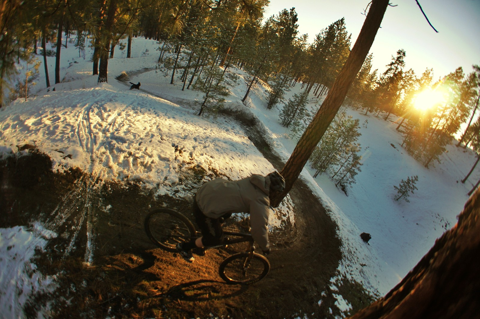 Winter Shred - Skye_Schillhammer - Mountain Biking Pictures - Vital MTB