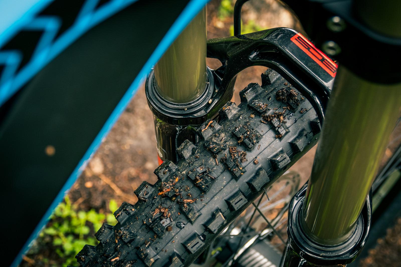 2015 YT Tues CF Pro Downhill Bike - Testing the 2015 YT Tues CF Pro Downhill Bike - Mountain Biking Pictures - Vital MTB