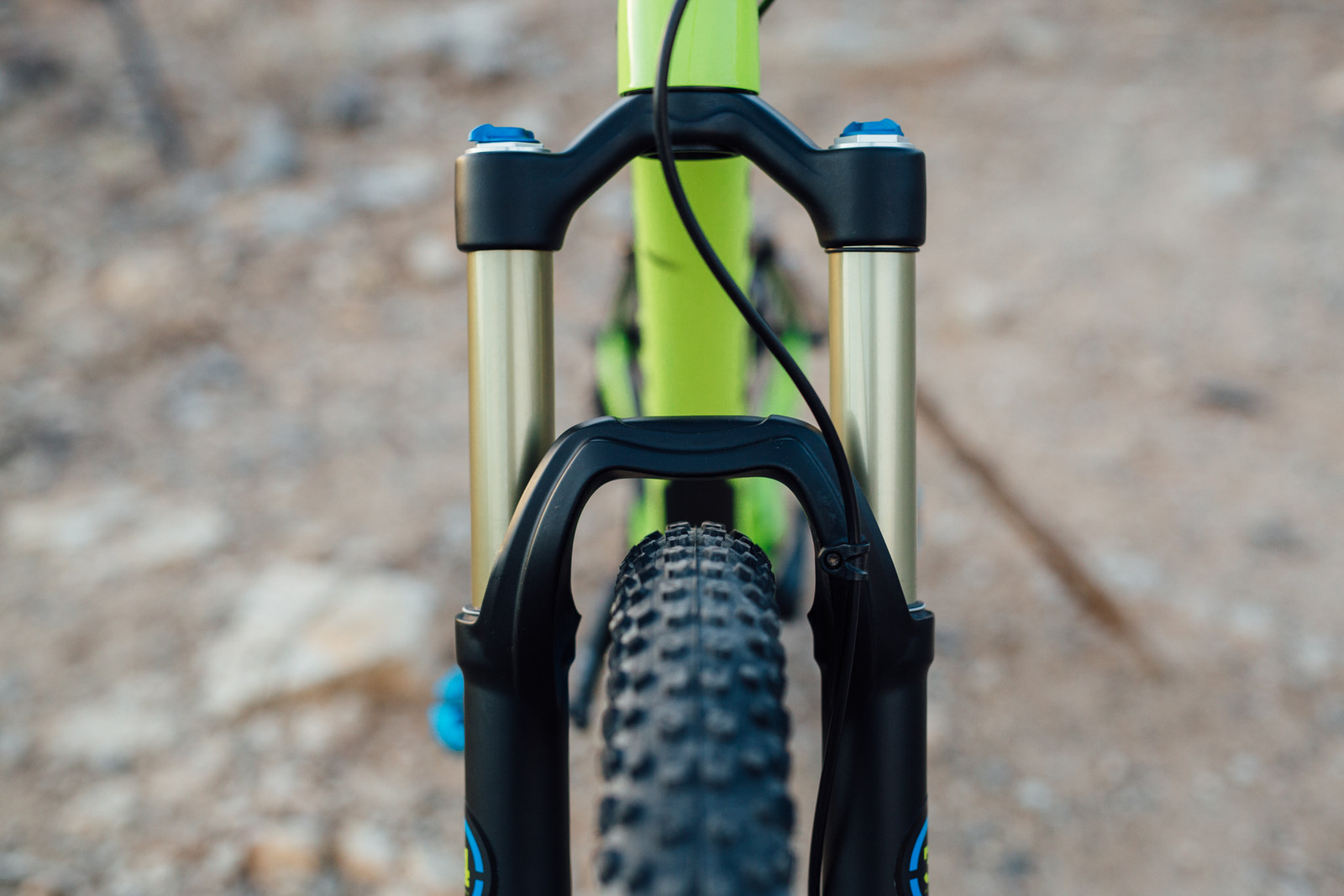 Trek Fuel EX 9 29 - 2016 Vital MTB Test Sessions - Trek Fuel EX 9 29 - 2016 Vital MTB Test Sessions - Mountain Biking Pictures - Vital MTB