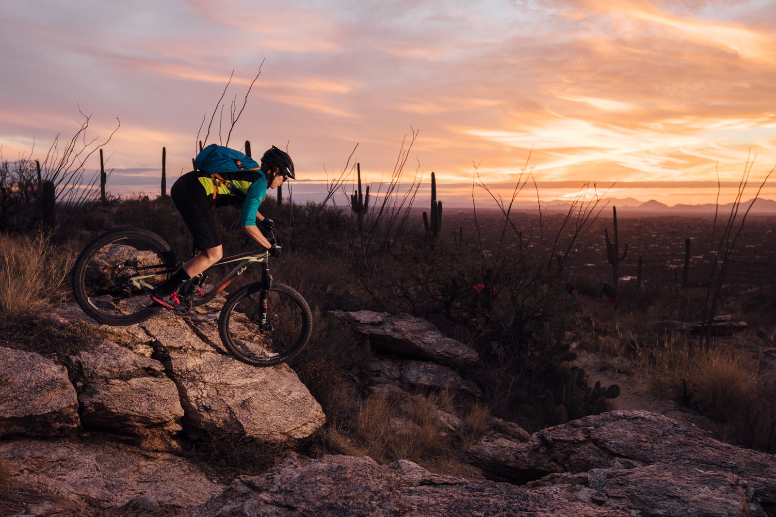 The High Line - Just The Bangers - 2017 Vital MTB Test Sessions Photo Gallery - Mountain Biking Pictures - Vital MTB