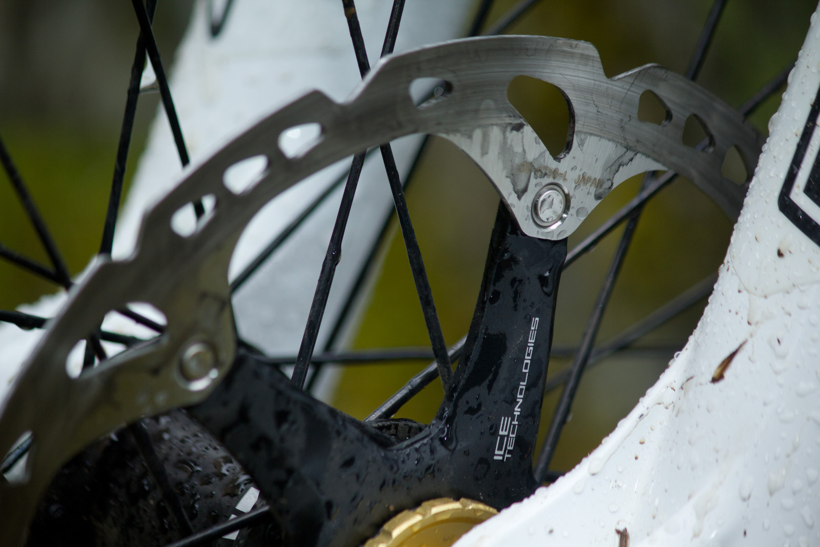 Shimano Ice Tech Rotors - First Look: Vital's Pre-Production Shimano Saint Equipped V-10 Carbon - Mountain Biking Pictures - Vital MTB