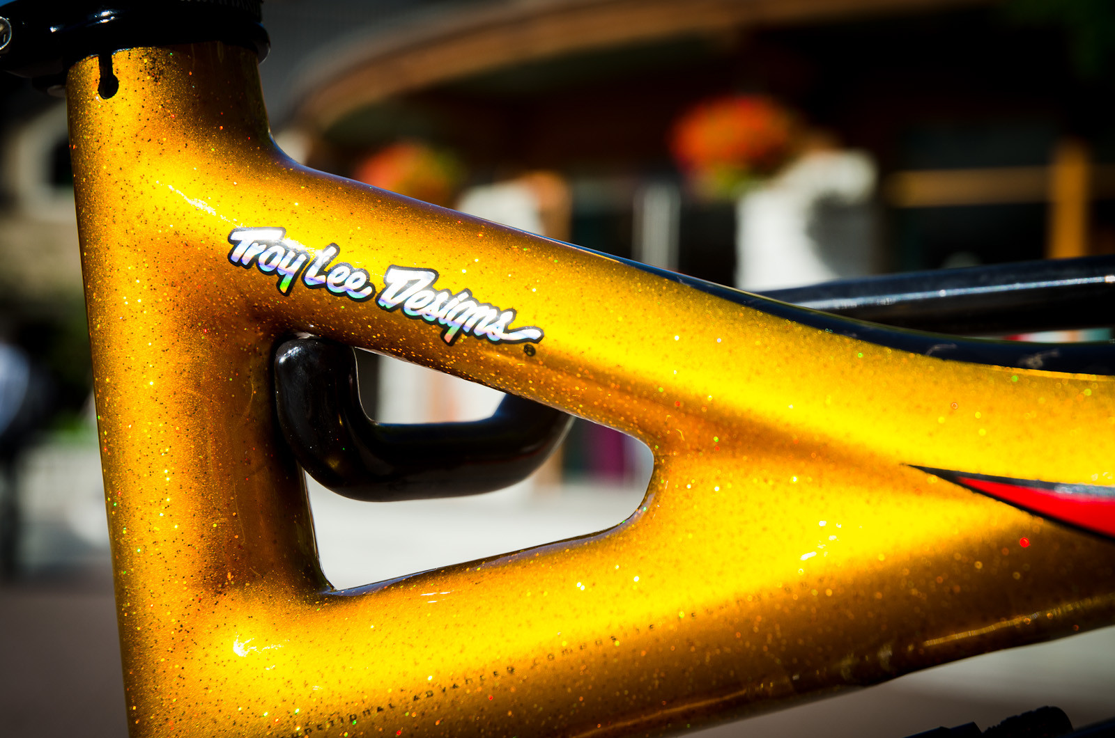 Bling Bling! - First Look: Limited Edition 2013 Specialized / Troy Lee Designs Frames - Mountain Biking Pictures - Vital MTB