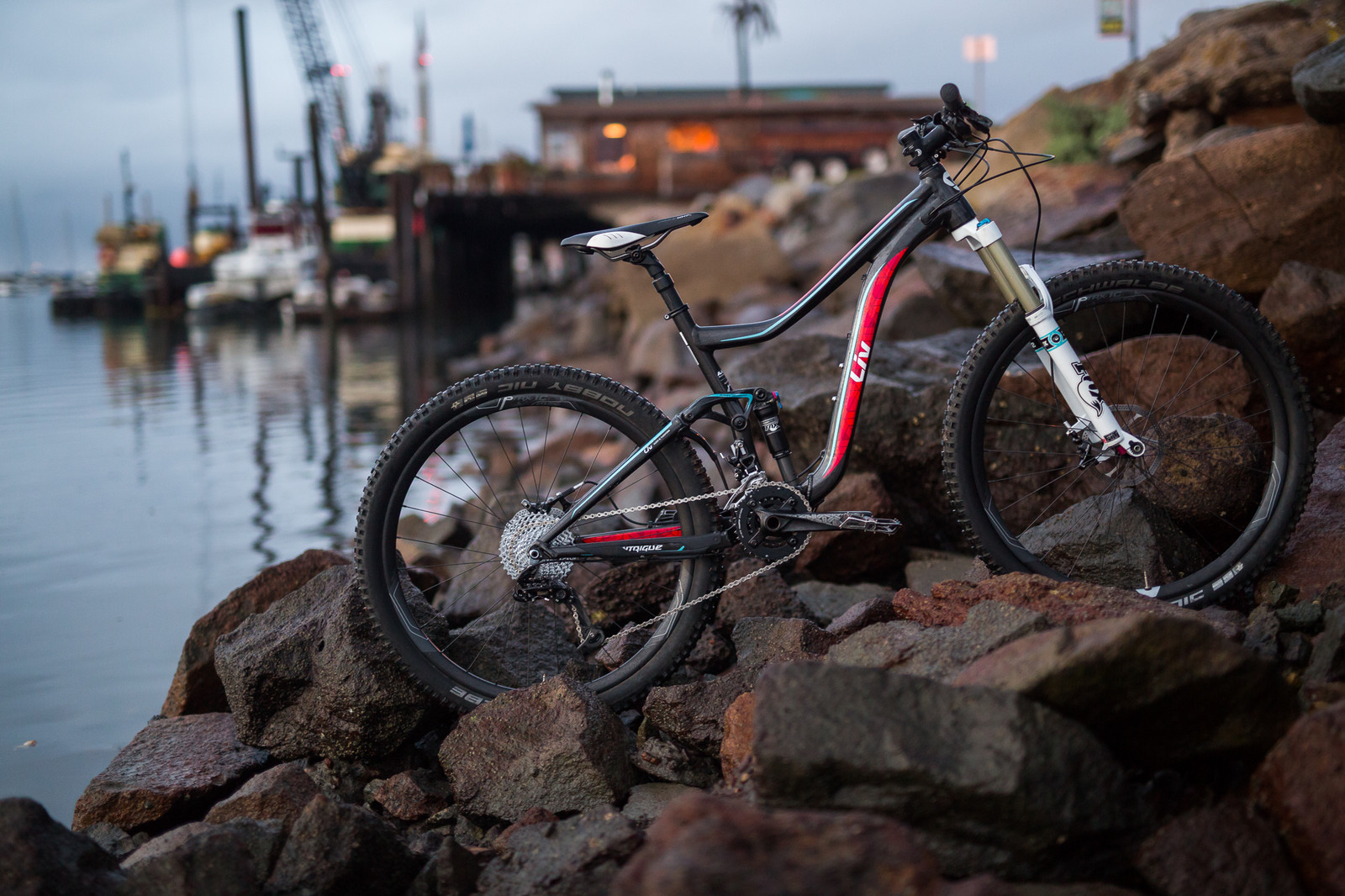 2015 Liv Giant Intrigue 1 - 19 Bikes Tested - 2015 Vital MTB Test Sessions - Mountain Biking Pictures - Vital MTB