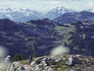 Lord of the Squirrels - Riding Whistler's Best Alpine Trail with Kevin Landry and His Dog Indy
