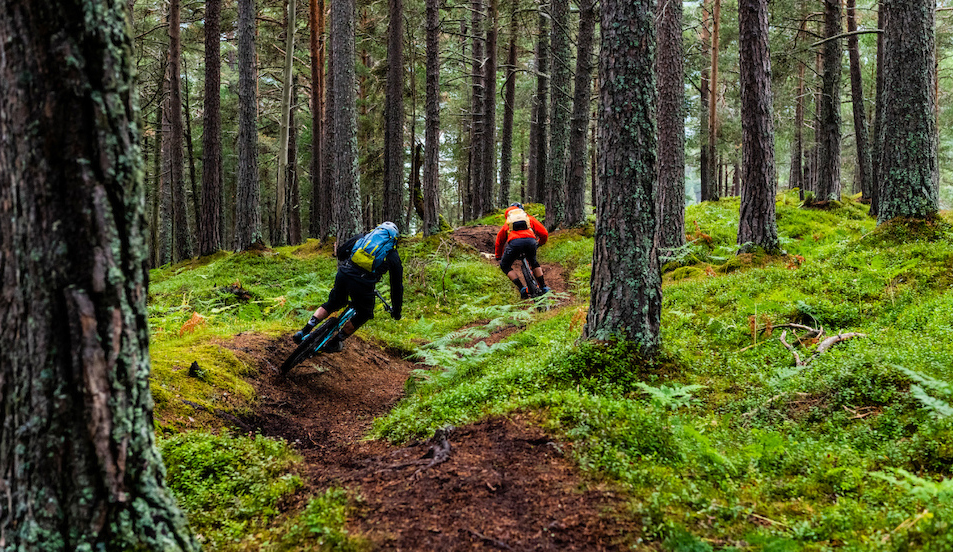The Way to the North - Vanderham and Gauvin Get the Goods in Norway