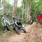 EW_Bike's Giant