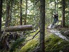 Prime Time // Shoulder Season in Whistler, BC