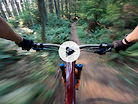 Hang On and Think Fast! Jill Kintner Flies Through the Chuckanut Mtn Trees