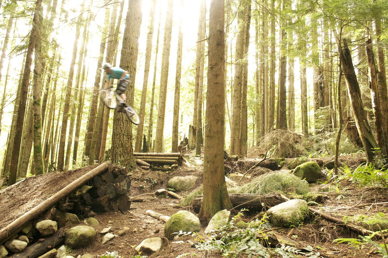 Dory - derekt - Mountain Biking Pictures - Vital MTB