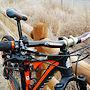 Orange County's Intense Carbine 29 Custom Build