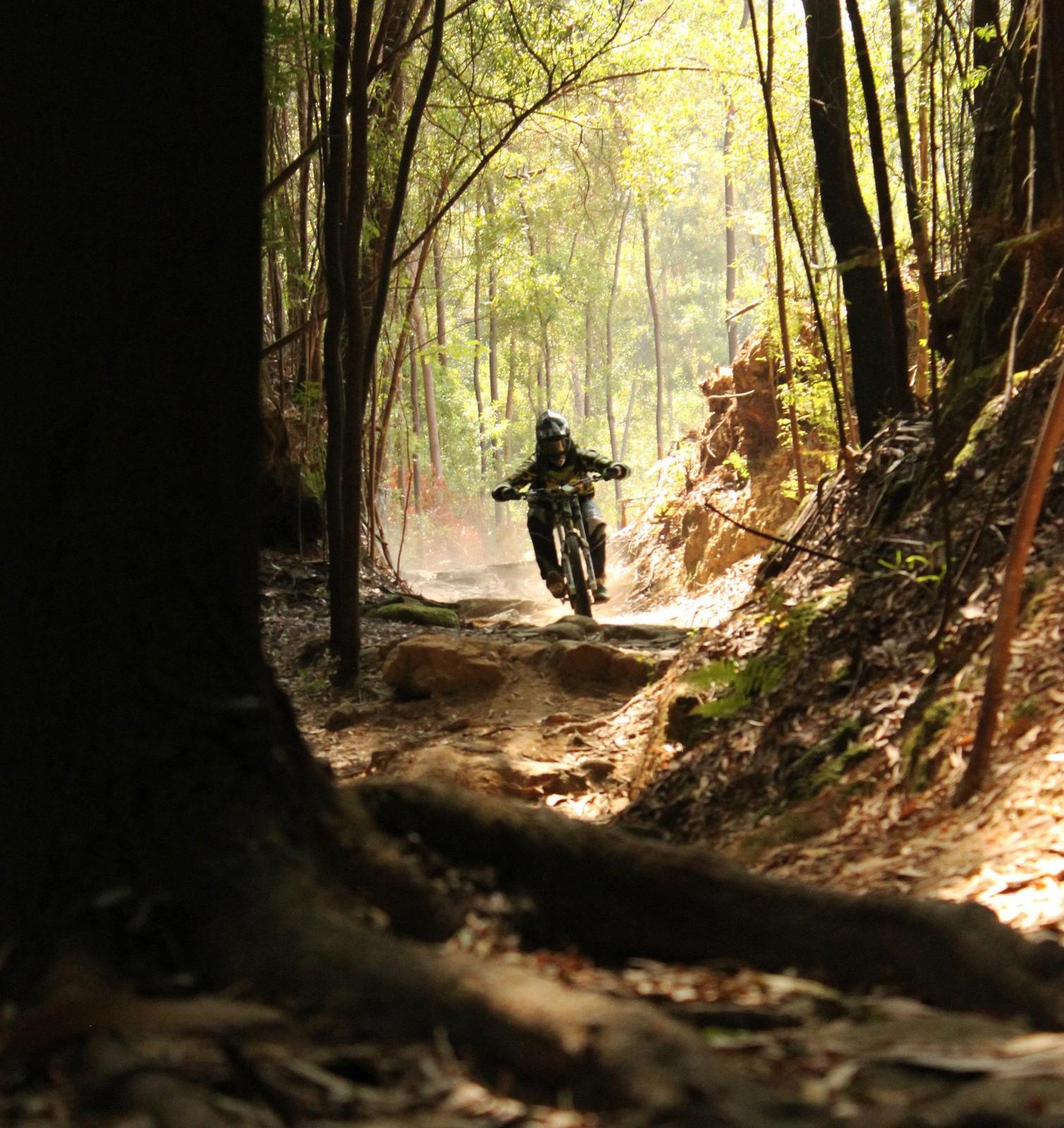 Rock garden - DoubleCrownKing - Mountain Biking Pictures - Vital MTB