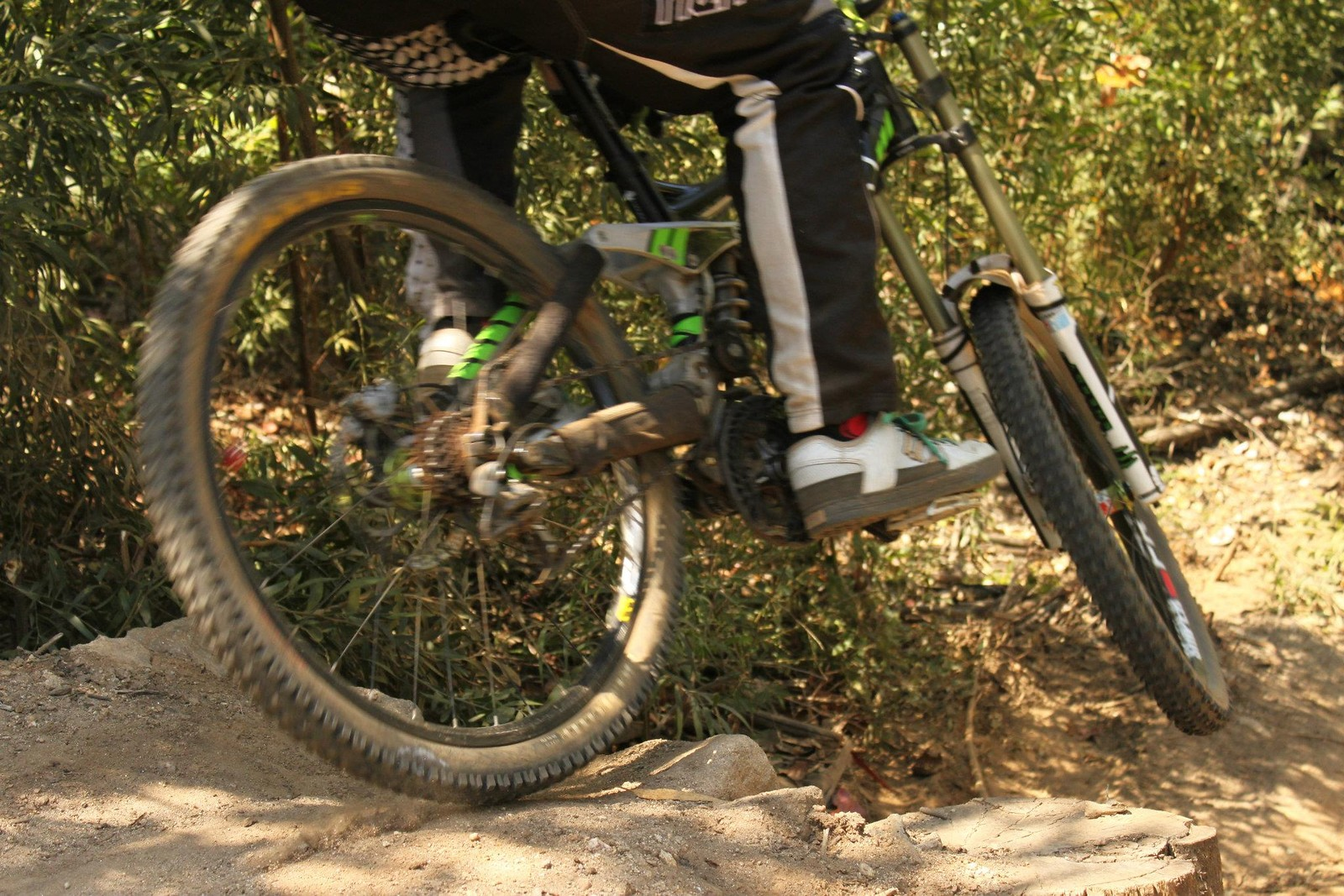 Scrub - DoubleCrownKing - Mountain Biking Pictures - Vital MTB