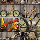 Troy Lee Design Limited Specialized Stumpjumper EVO Custom