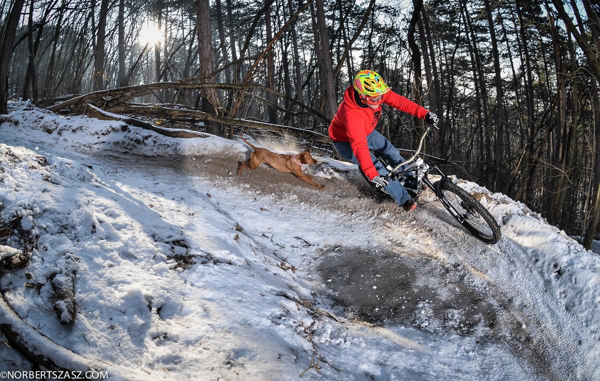 Greg Picker and Erzsi the Dog - NorbertSzasz - Mountain Biking Pictures - Vital MTB