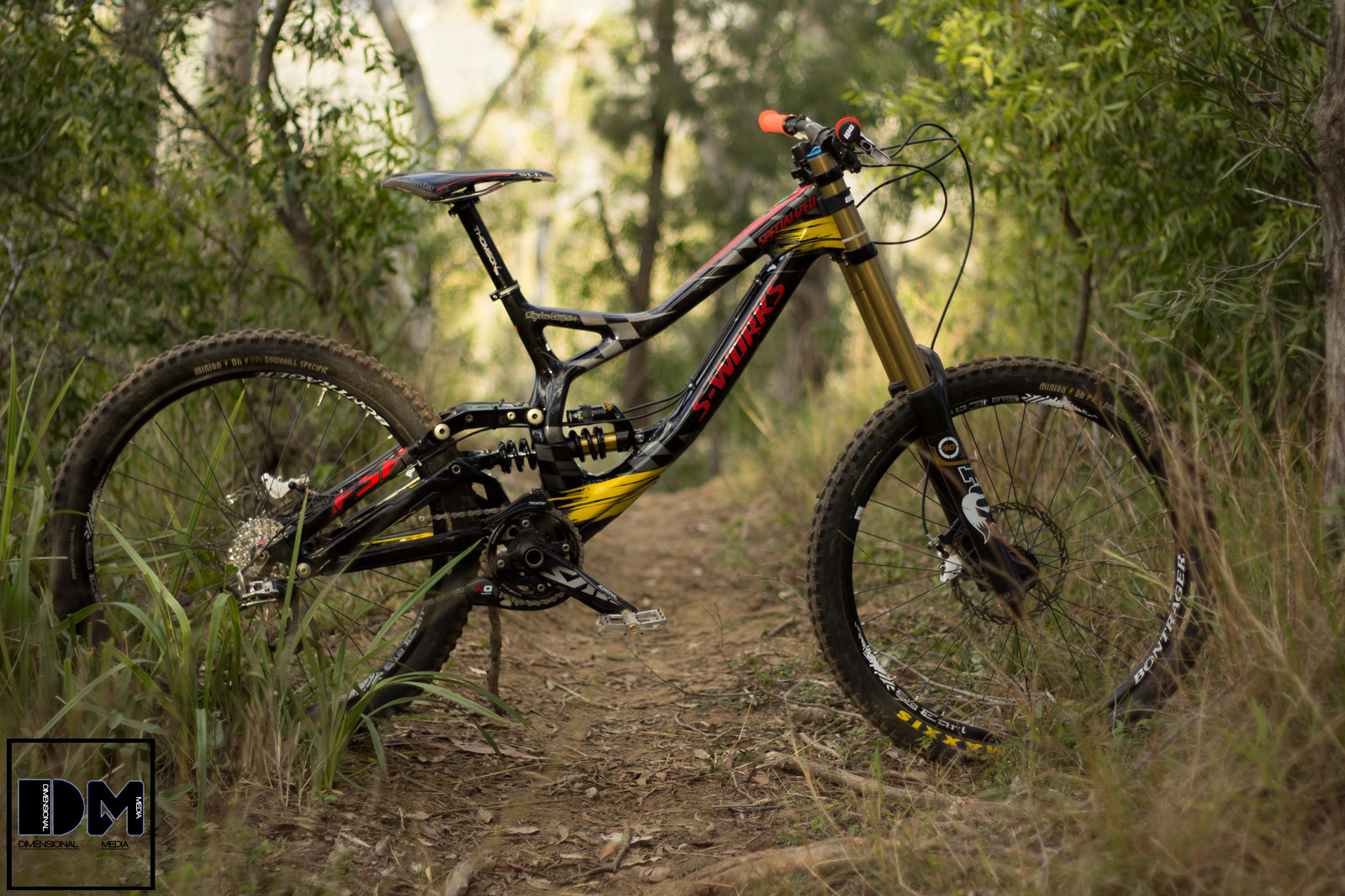 limited edition specialized troy lee designs s works demo
