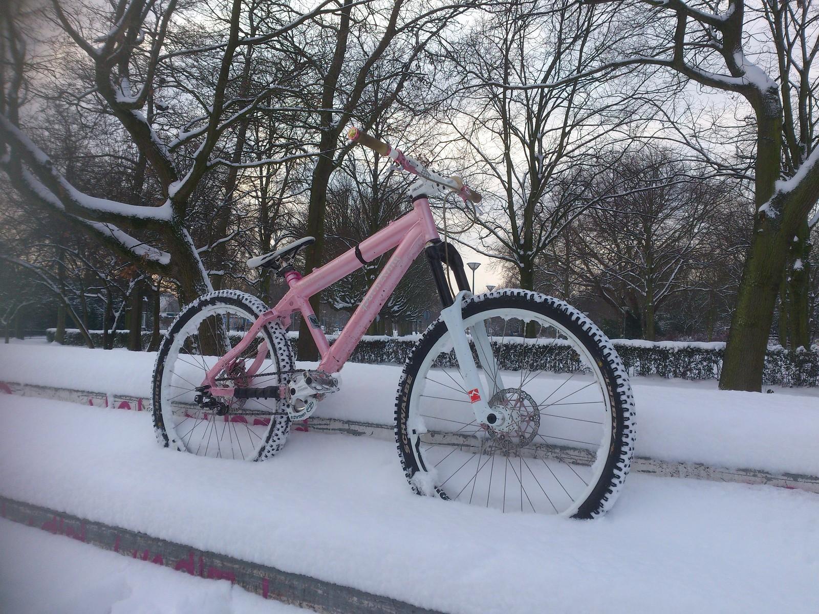 DSC 4907 - marcel.geel - Mountain Biking Pictures - Vital MTB