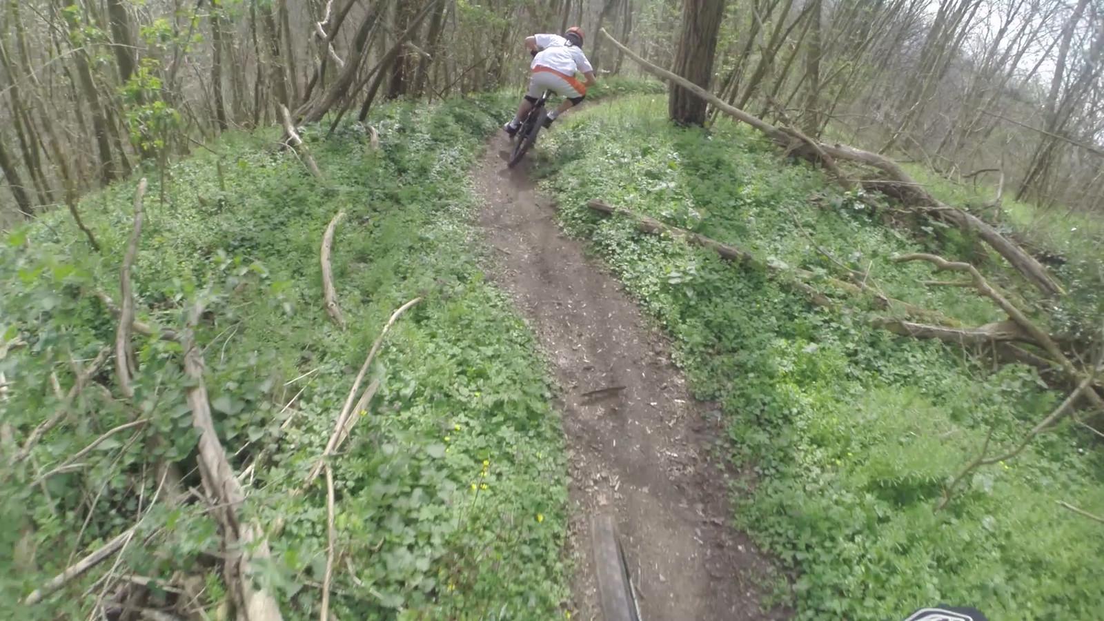 fr1 - dennis.leidelmeijer - Mountain Biking Pictures - Vital MTB