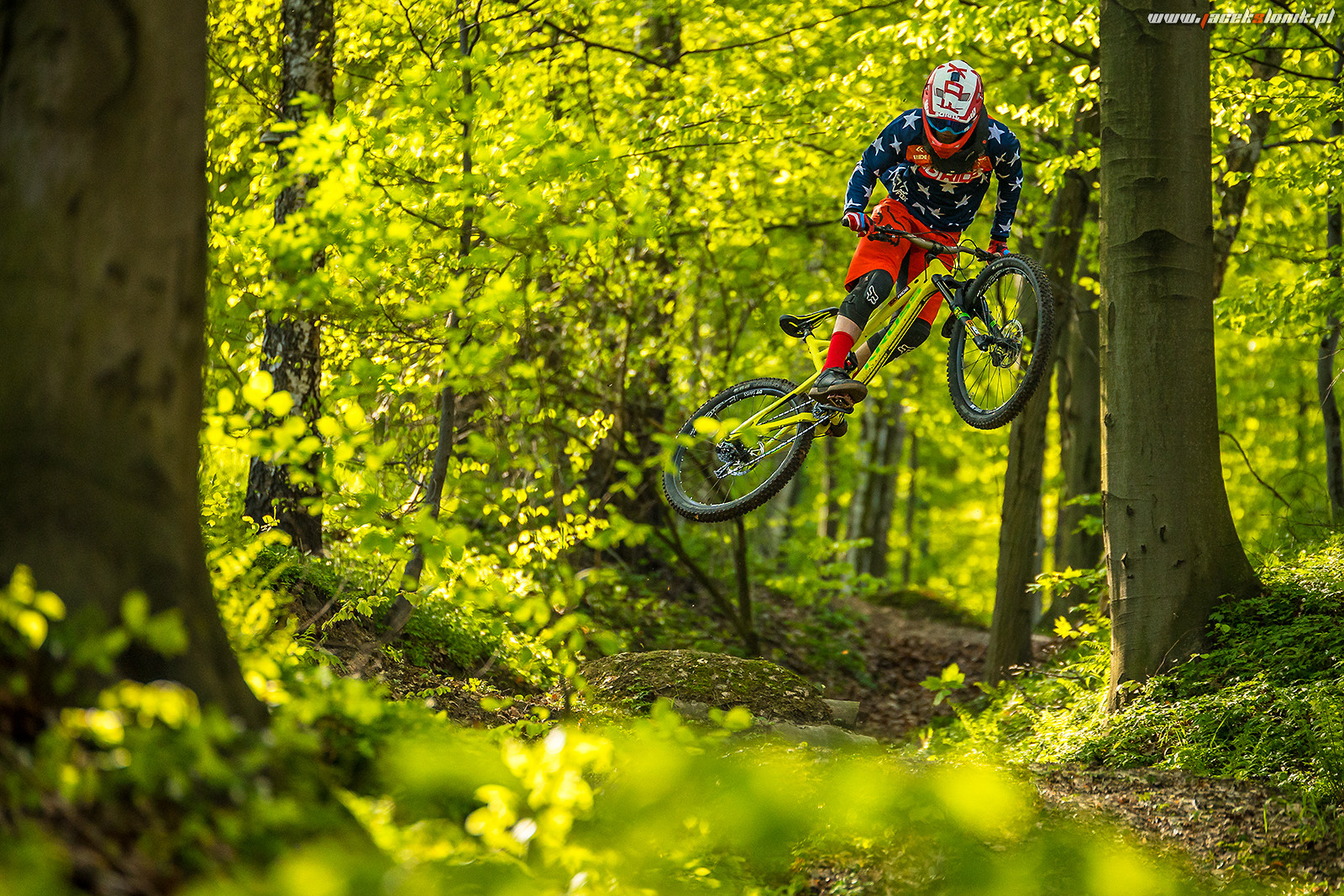 Whip it! - JacekSlonik - Mountain Biking Pictures - Vital MTB