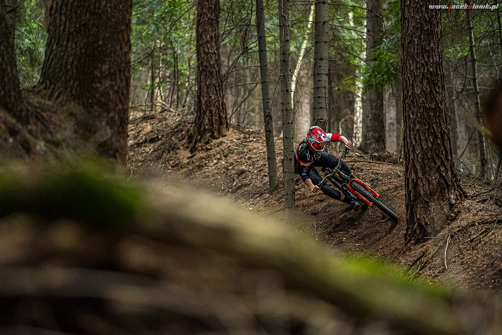 Tight by the tree - JacekSlonik - Mountain Biking Pictures - Vital MTB
