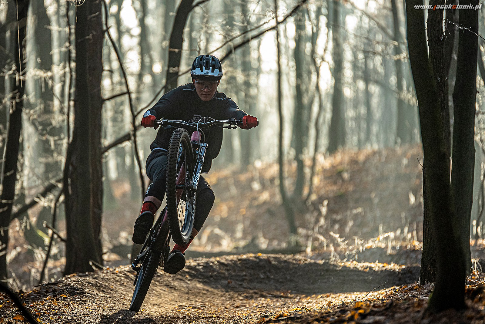 Manual Monday - JacekSlonik - Mountain Biking Pictures - Vital MTB