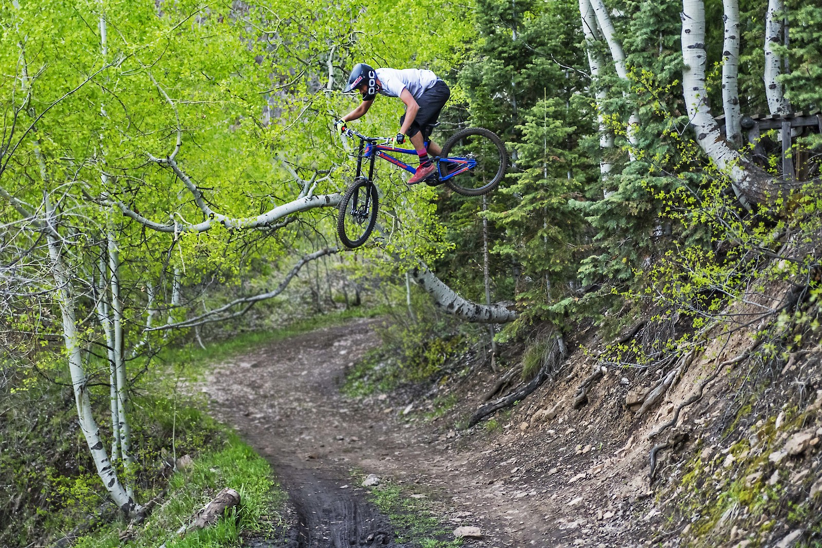 LS2 - yakattack - Mountain Biking Pictures - Vital MTB
