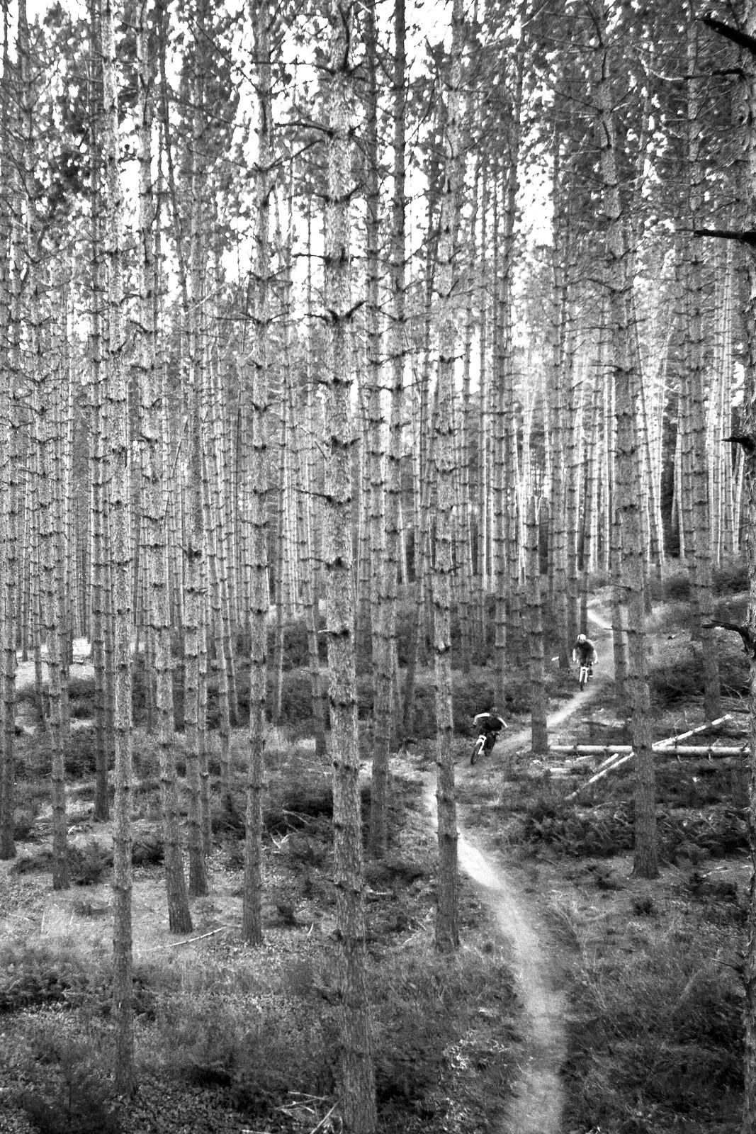 photo via Mountain Bike Vermont