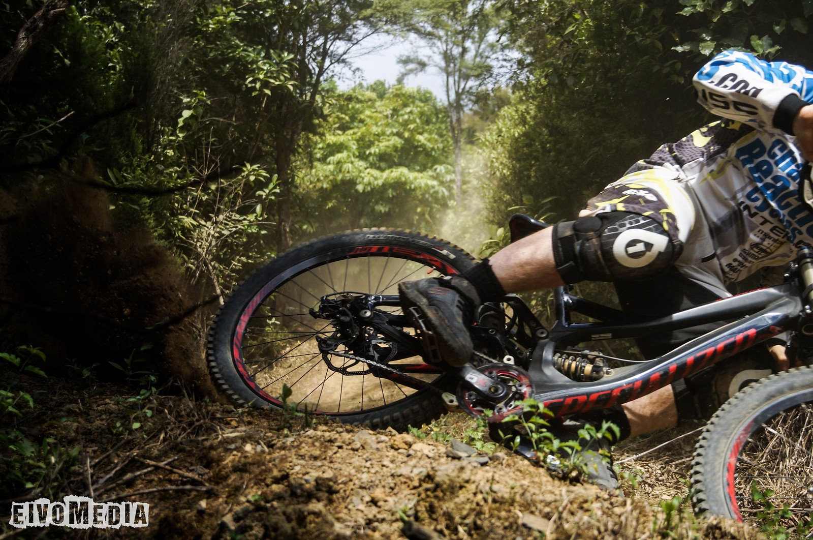 Hunua DH-10 - EIVOMEDIA - Mountain Biking Pictures - Vital MTB