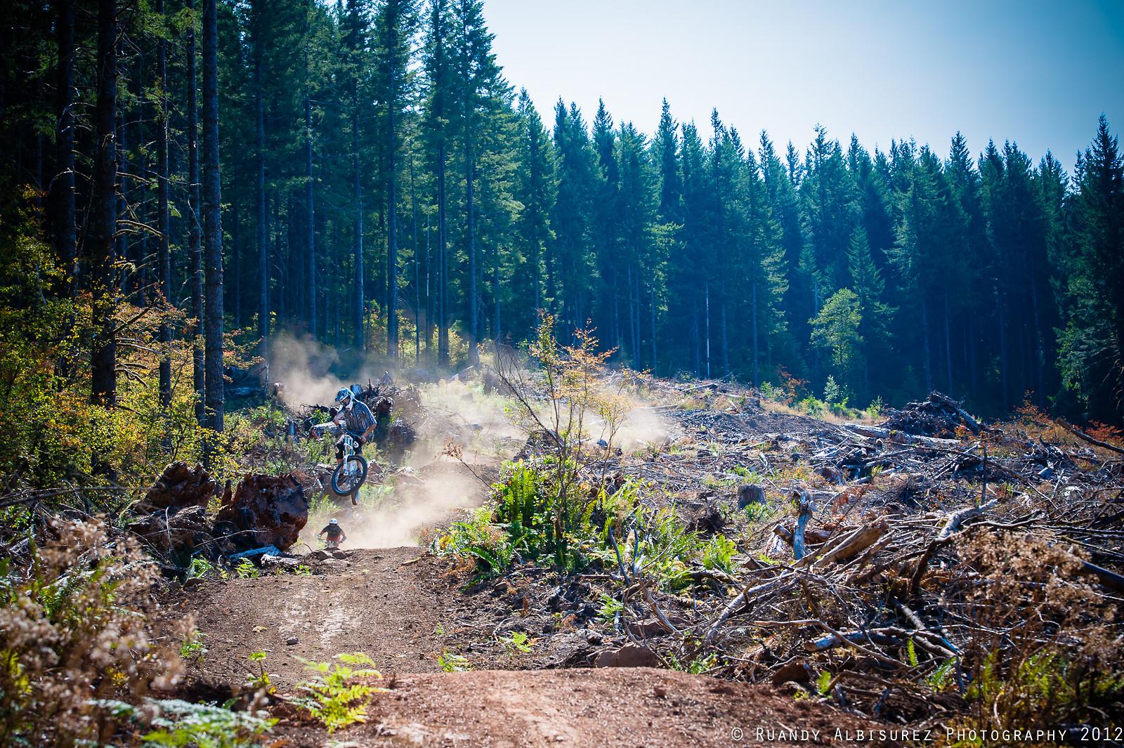 Two For Tea - rooshmoo - Mountain Biking Pictures - Vital MTB