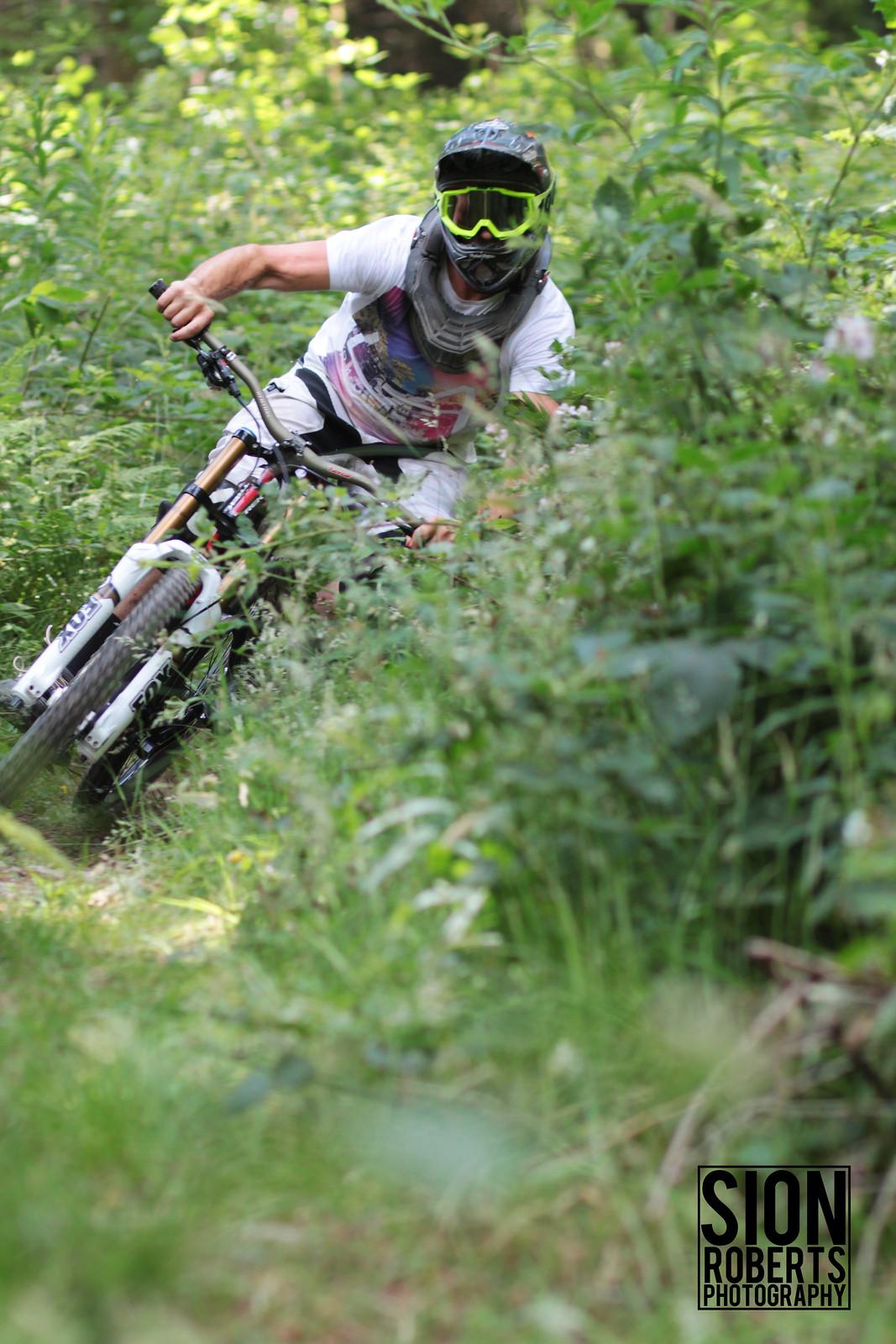 A Berm Through Bracken  - sionr644 - Mountain Biking Pictures - Vital MTB