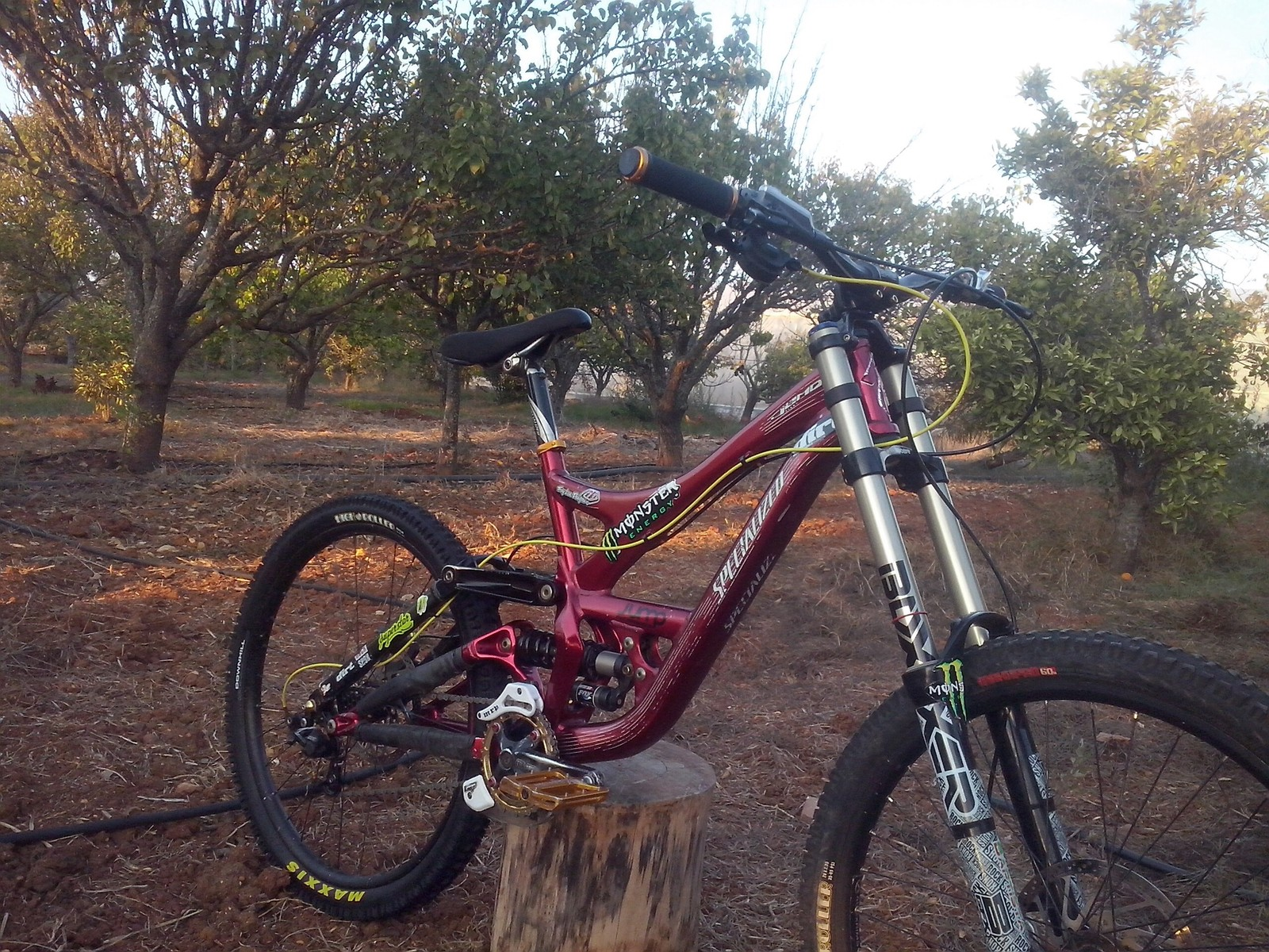 vitor baptista's Specialized