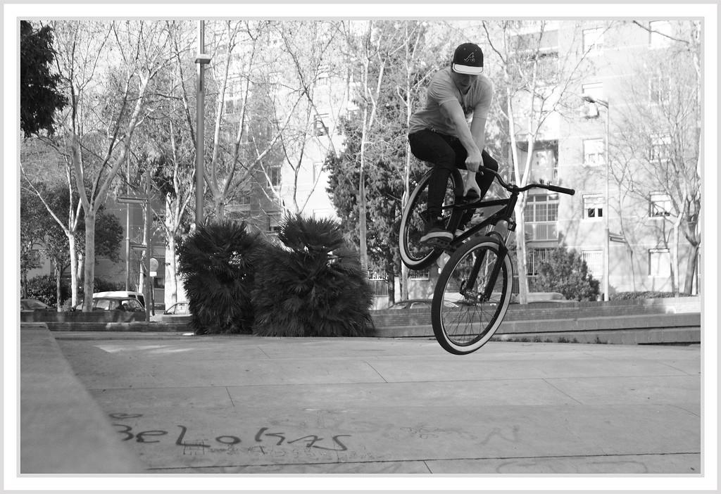 tobogan - baschdl-waschdl - Mountain Biking Pictures - Vital MTB