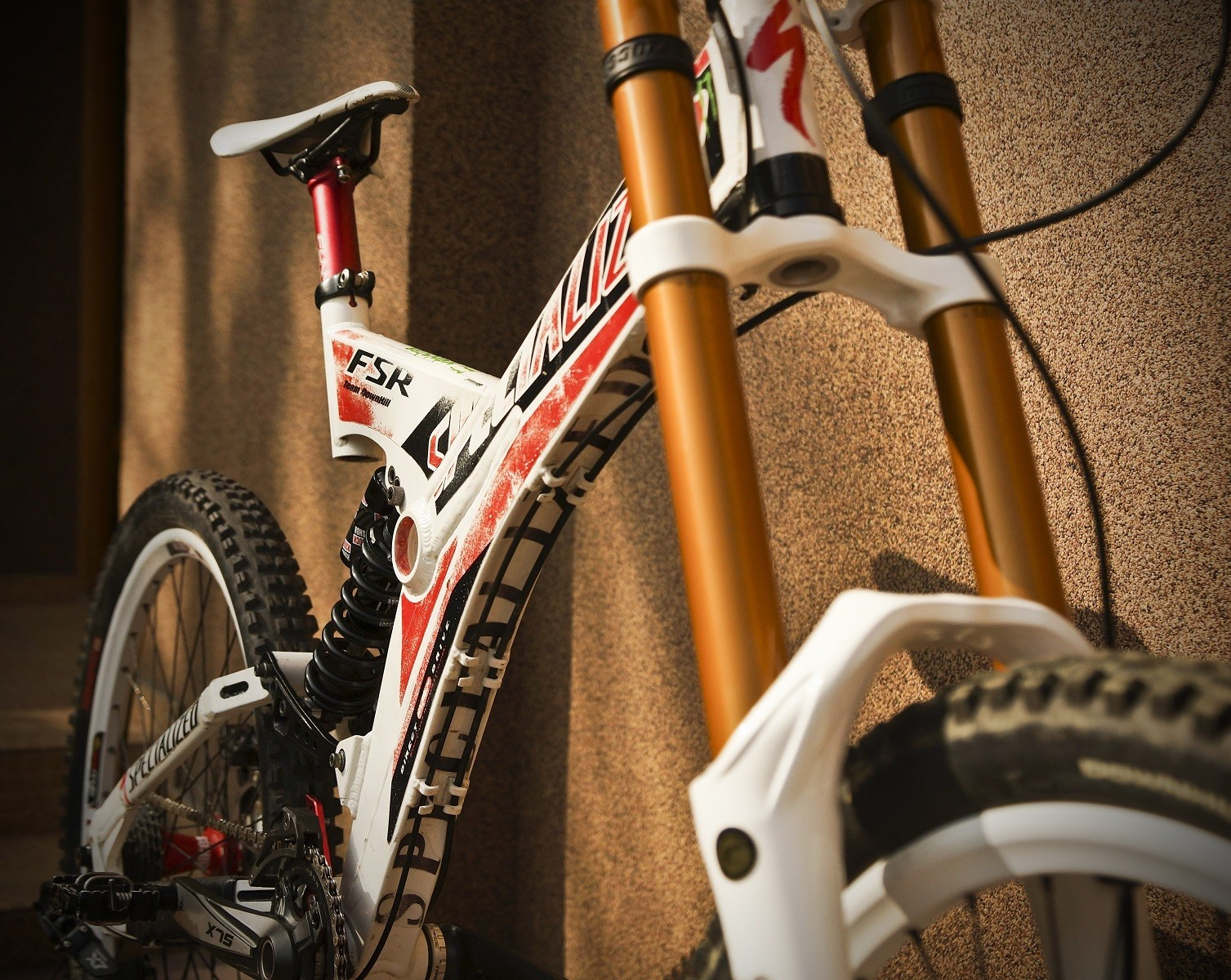 Specialized FSR DH Team