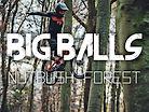 Nutbush - Big Balls