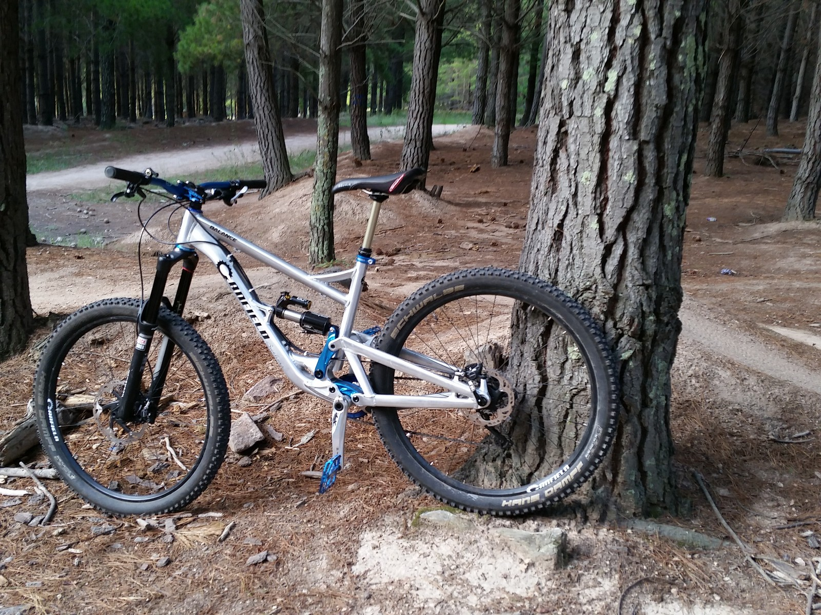 Canfield Balance 650b Only One Built in the World