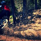Some riding