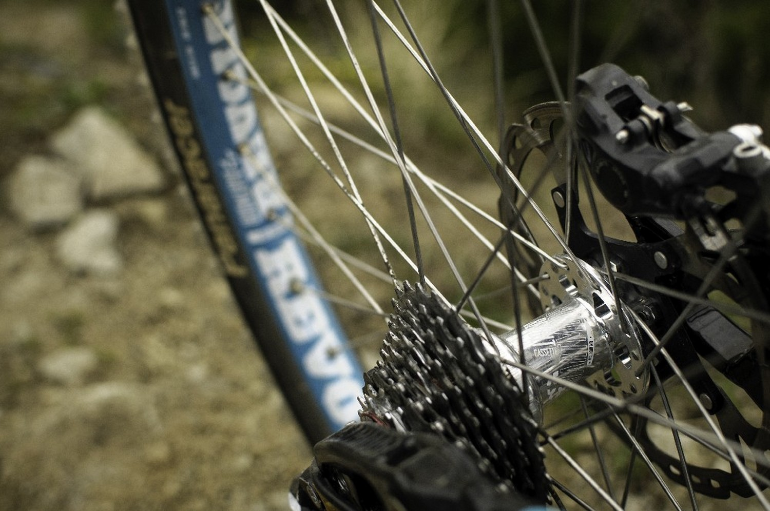 Dartmoor Revolt wheelset - Dartmoor Bikes - Mountain Biking Pictures - Vital MTB