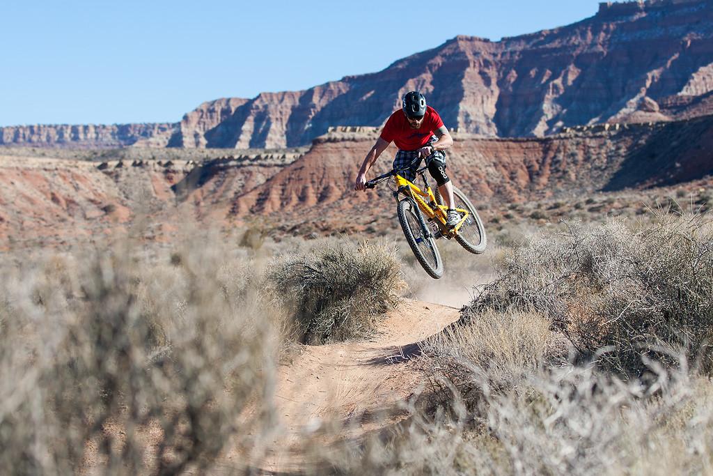 924P1291 - dfinn - Mountain Biking Pictures - Vital MTB